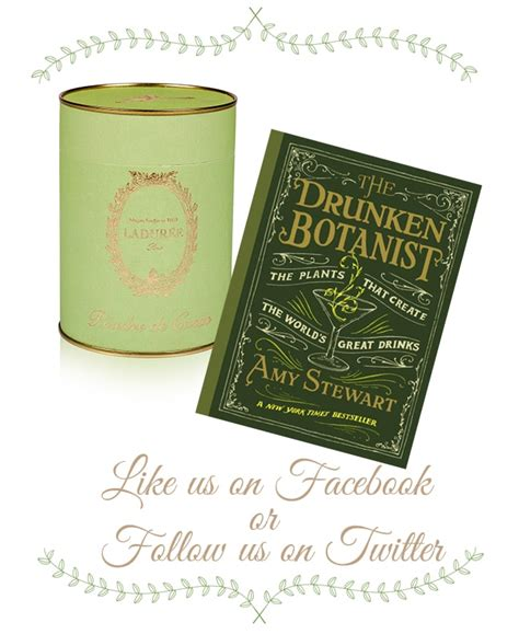 Nature S Own Big Green Egg Giveaway - books to read by the fire and a hot cocoa and book giveaway eye of the day garden