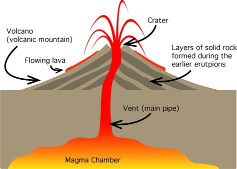 biography main features there are three main parts of a volcano the magma chamber