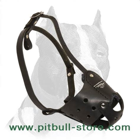 muzzle for pitbull everyday pit bull leather muzzle muzzle for pitbull terrier m51 1077 pitbull