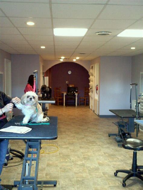 the grooming room our salon