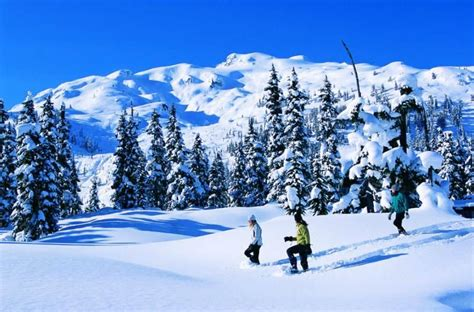 fotos invierno en canada willgoto canad 225 fotos de deportes de invierno en