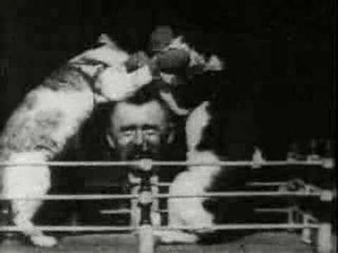 detik edison video kucing pertama kali dibuat oleh thomas alva edison
