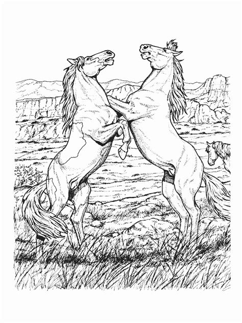 coloring pages of real horses coloring pages coloringpages1001