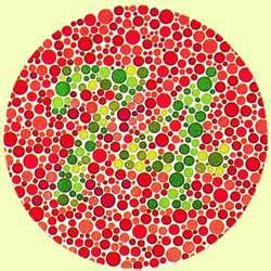 color blindness term color blindness definition of color blindness by