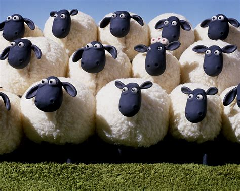 shaun the sheep pictures shaun the sheep free apps directories