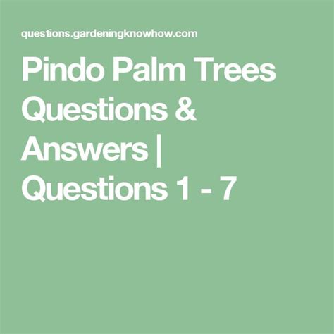 pindo palm trees questions answers questions