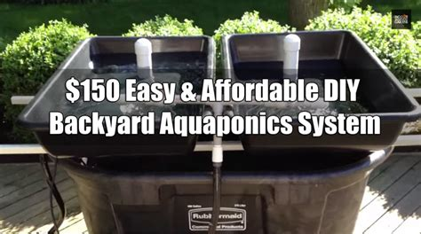 Backyard Aquaponics System by 150 Easy Affordable Diy Backyard Aquaponics System