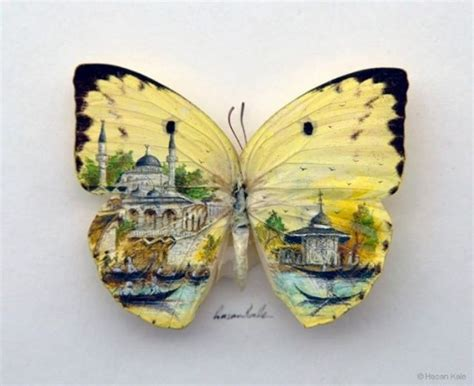 paintings on butterfly wings xcitefun net