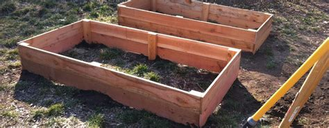 cheap raised beds raised garden beds the holy shit i built these for 25