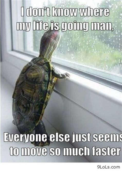 Funny Depression Memes - funny depressed memes image memes at relatably com