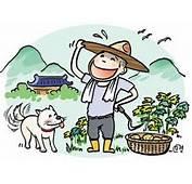 꿈꾸는 농부의 주말농장 이야기  마음으로띵하게 살자