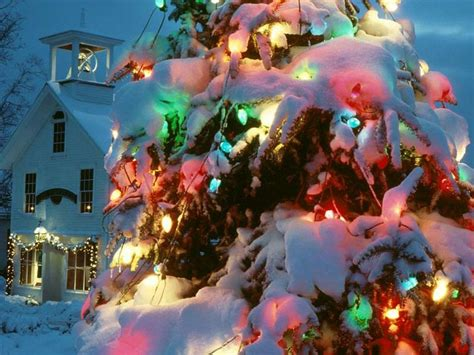holiday lights screensavers free how to draw snow covered christmas tree hellokids com