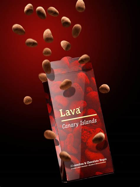 Exterior Home Design lava for chocolate rock company product roger m 233 ndez
