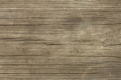 wooden plank tree wooden plank tree 28 images high resolution seamless