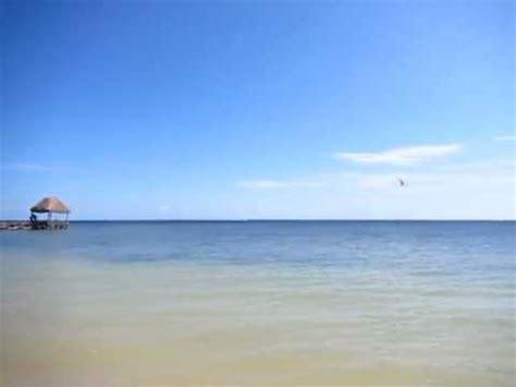 maya chan beach resort  costa maya mexico youtube