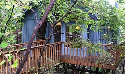 treehouse cottages eureka springs ar hidden oak treehouse