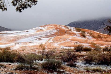 snow in sahara desert these photos of a snowy sahara desert show the true