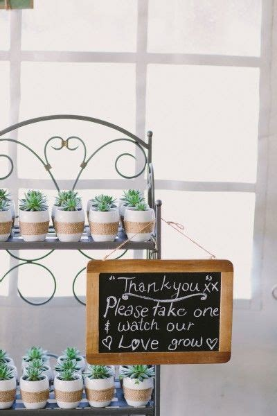 The perfect bonbonniere for your guests. These Succulent