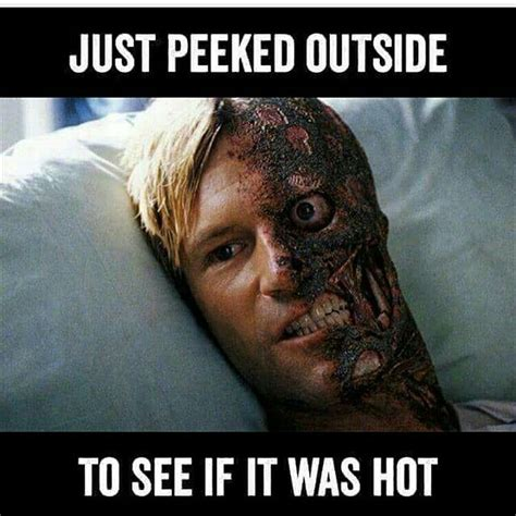 Summer Meme - 278 best memes wallpapers quotes images on pinterest