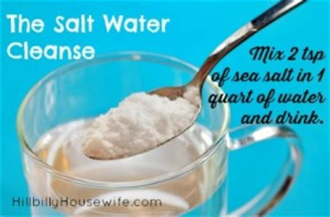 Salt Water Detox Recipe by Saltwater Cleanse And Noodles Whole 30 Day 1 Recap