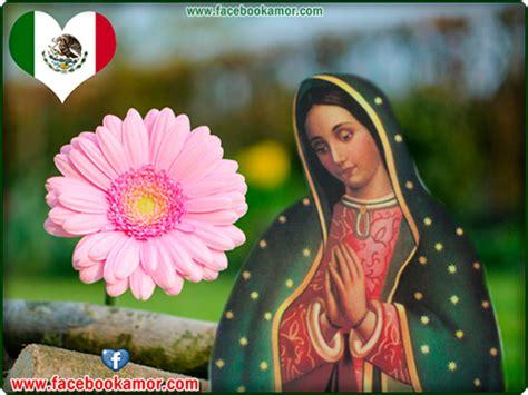 imagenes de la virgen de guadalupe para facebook im 225 genes bonitas de amor imagen de virgen de guadalupe