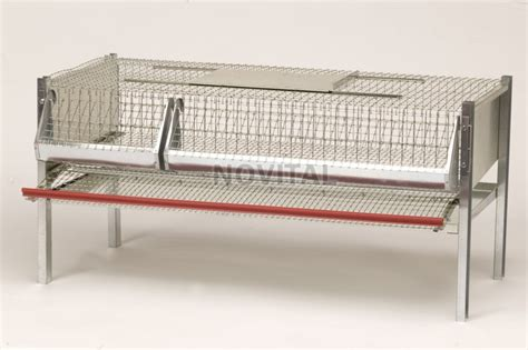 gabbie per quaglie usate павлин клетки для кур интернет магазин