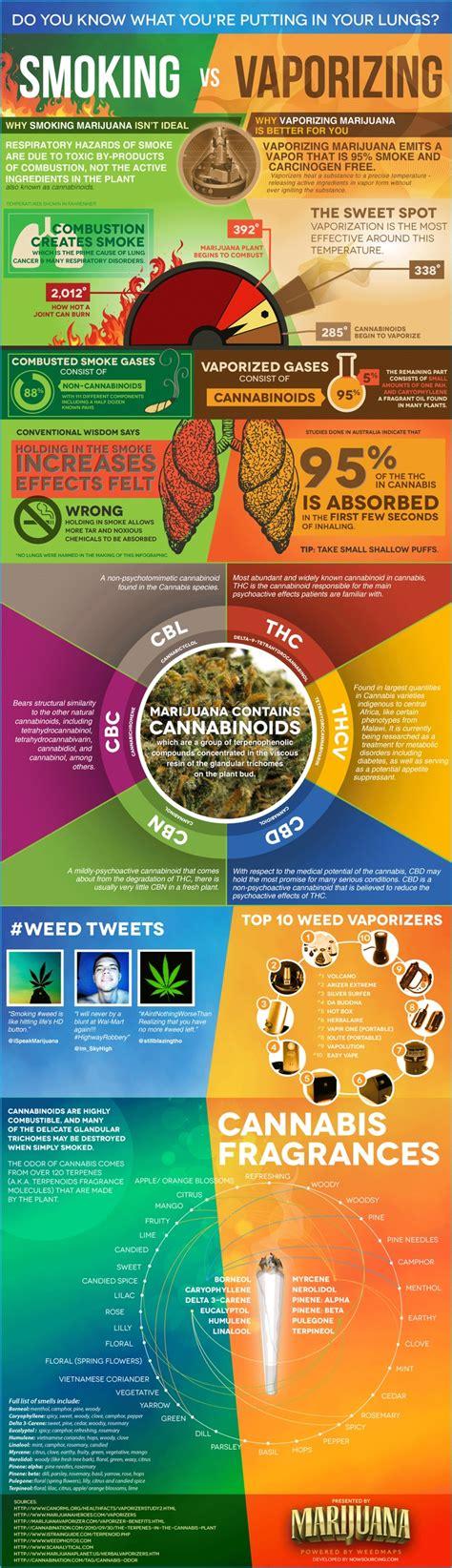 Vs Vaping Essay by Marijuana Vs Vaporizing Infographic Karma Jello