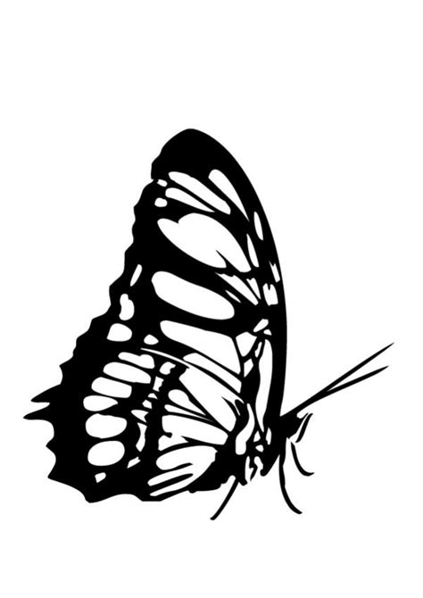 monarch butterfly outline   clip art