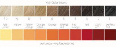 hair color levels how to get lighter hair color from reed