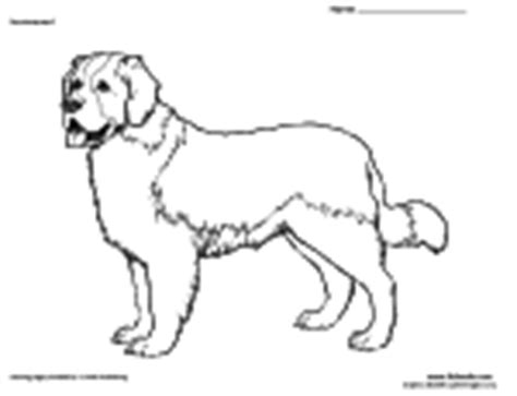 free animal coloring pages 21 40
