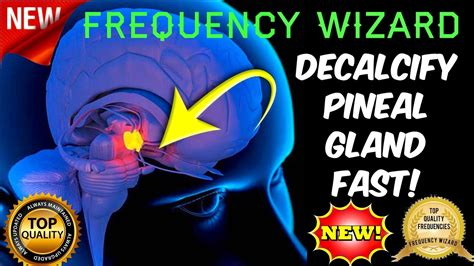 Detox Your Pineal Gland Decalcify by Decalcify Your Pineal Gland Fast Flu0ride Detox