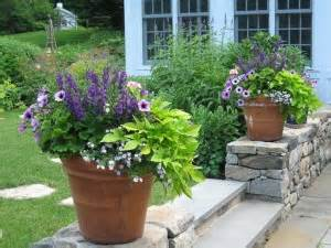 container gardening plant combinations containers that won t quit ziffer