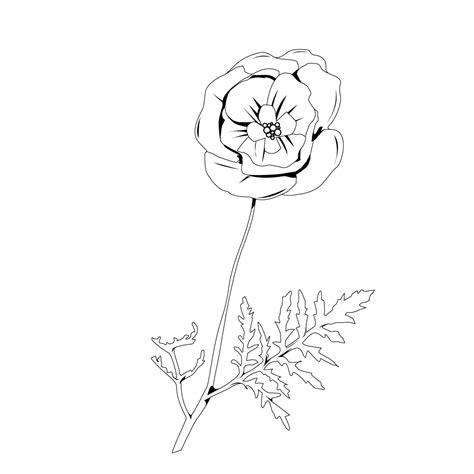 imagenes de rosas faciles para colorear free coloring pages of cempasuchil flower