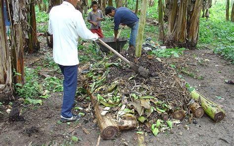 Harga Pupuk Kandang Sapi 2017 bahan pembuatan pupuk organik padat media tanam