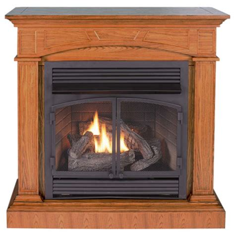 Gas Fireplaces Vent Free by Gas Fireplaces Wayfair