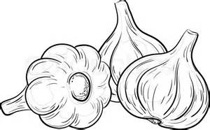 vegetable spice three garlics vector monochrome