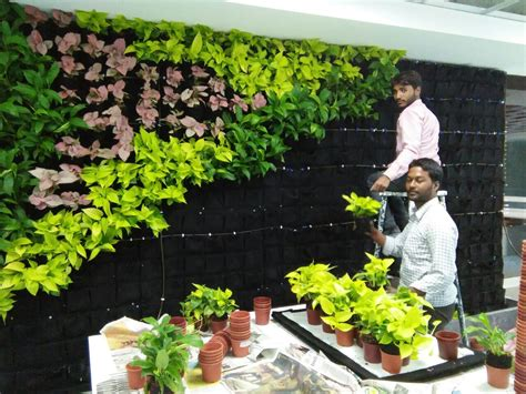 vertical gardens bangalore green walls india lifewall