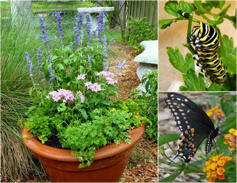 Butterfly Planter attracting butterflies how to make a butterfly garden