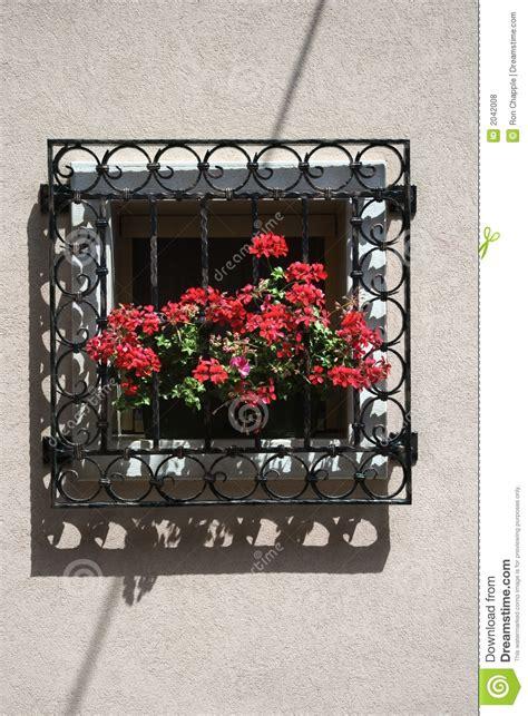 davanzale finestra gerani sul davanzale della finestra fotografia