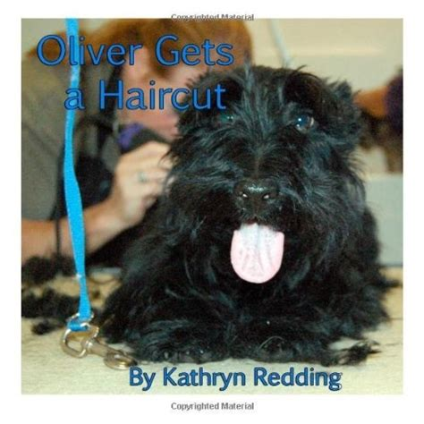 scottish terrier haircuts newhairstylesformen2014 com scottish terrier haircuts newhairstylesformen2014 com