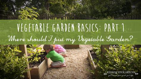 family vegetable garden 1st question to answer when starting your family vegetable