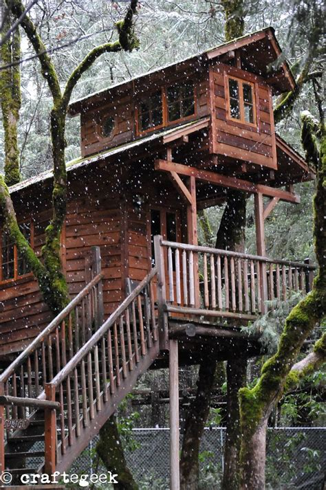 treehouse living 17 best images about tree houses on pinterest swiss
