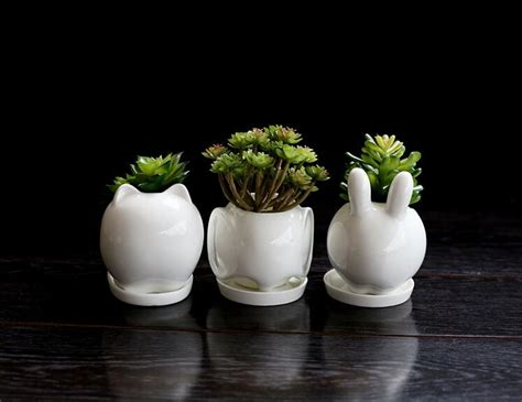 ceramic dish garden containers buy wholesale dish garden pots from china dish