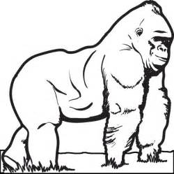 gorilla coloring pages free printable gorilla coloring page for