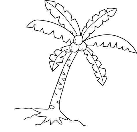 Coconut Cliparts Black And White Tree Coloring Page