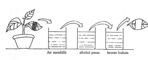 Air Ion Perak Ag Ionic Silver Water Paket Mitra Ag 500 Ml asal ion perak msi silver ion spray asli my story