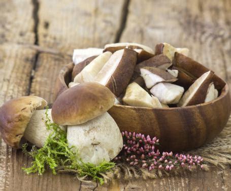 funghi bambini alimentazione ricette con i funghi la scheda e le cottura dei funghi