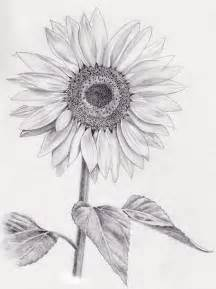 sunflower tattoo drawing photo pictures images sketches ideas tattoo collection