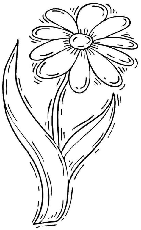 coloring page daisy flower free coloring pages of daisy flower