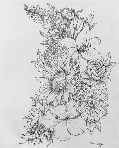 drawn flower detailed pencil and in color drawn flower